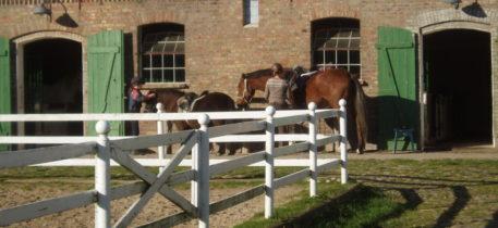 Gut Falkenhain - Stallungen, 2 Kinder mit Pferden