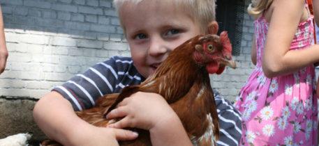 Kinderbauernhof Gussow